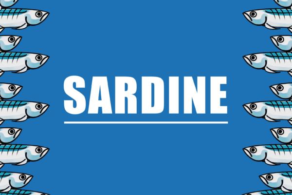 Le Sardine